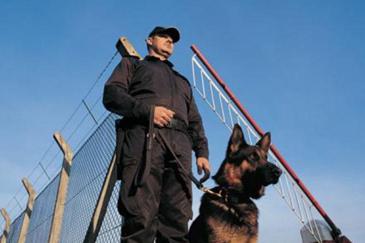 security guard hiring